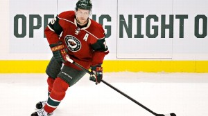 Heatley FANTASY HOCKEY - WHAT'S THE POINT MAN?