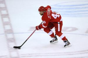 Zetterberg FANTASY HOCKEY - WHAT'S THE POINT MAN?